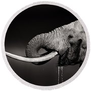 Elephant Bull Drinking Water - Duetone Round Beach Towel