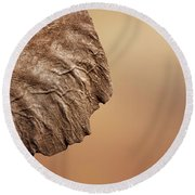 Elephant Ear Close-up Round Beach Towel