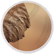 Elephant Ear Close-up Round Beach Towel