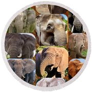 Elephant Faces Round Beach Towel