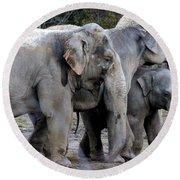 Elephant Family Round Beach Towel