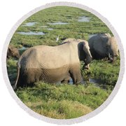 Elephant Family Round Beach Towel