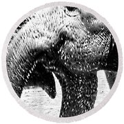 Elephant Gossip Round Beach Towel