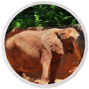 Elephant In Red Clay Round Beach Towel