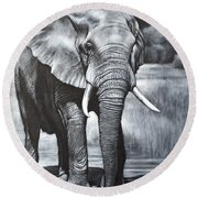 Elephant Night Walker Round Beach Towel