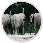 Elephant Trio Round Beach Towel