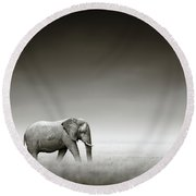 Elephant With Zebra Round Beach Towel