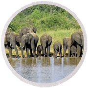 Elephants At The Waterhole   Round Beach Towel