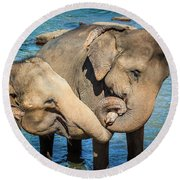 Elephants Bathing In A River Round Beach Towel