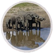 Elephants In The Mirror Round Beach Towel