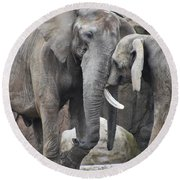 Elephants Playing 2 Round Beach Towel