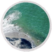 Eleven Brown Pelicans Round Beach Towel