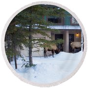 Elk Come Calling Round Beach Towel