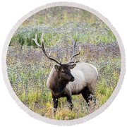 Elk In Wildflowers #1 Round Beach Towel