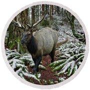 Elk In Winter Round Beach Towel