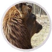 Elk Profile Round Beach Towel