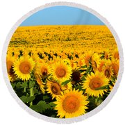 Endless Sunflowers Round Beach Towel