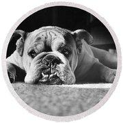 English Bulldog Round Beach Towel