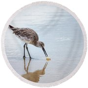 Enjoying A Meal Round Beach Towel by Todd Blanchard