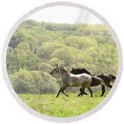 Equines For Freedom Round Beach Towel
