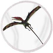 Eudimorphodon On White Round Beach Towel