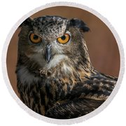 Eurasian Eagle Owl Iv Round Beach Towel