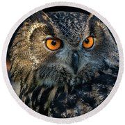 Eurasian Eagle Owl Round Beach Towel