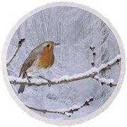 European Robin On Snowy Branch Round Beach Towel