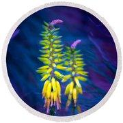 Aloe Flowers Round Beach Towel