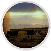 Evening Cows Round Beach Towel