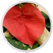 Evening Hau Tree Leaves Round Beach Towel