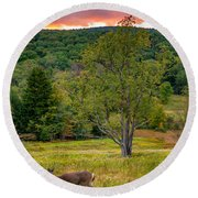 Evening In The Valley Round Beach Towel