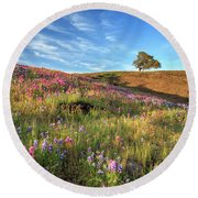 Evening Light At North Table Mountain Round Beach Towel