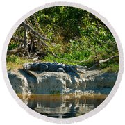 Everglades Crocodile Round Beach Towel