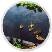 Exotic Birds Of America Ducks In A Pond Round Beach Towel