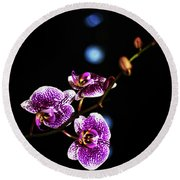 Exotic Orchid 6 Round Beach Towel
