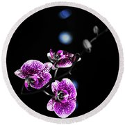 Exotic Orchid 6 V2 Round Beach Towel