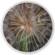 Experience The Dandelion Round Beach Towel