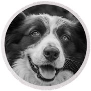 Expression Of A Border Collie Round Beach Towel