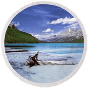 Exterior Decorations Round Beach Towel