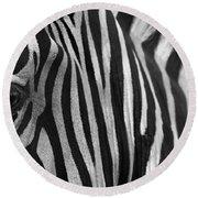 Extreme Close Up Of A Zebra Round Beach Towel