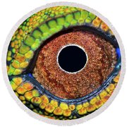 Eye Dragon Forest Round Beach Towel