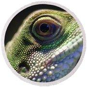Eye Of Lizard Round Beach Towel