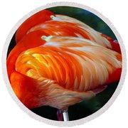 Eye Of The Flamingos Round Beach Towel