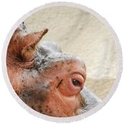 Eye Of The Hippo Round Beach Towel