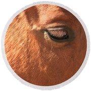 Eyelashes - Horse Close Up Round Beach Towel
