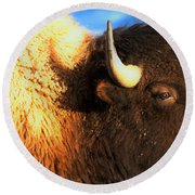 Eyes Of The Bison Spring 2018 Round Beach Towel