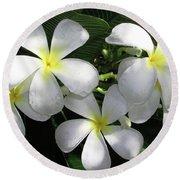 F1 Plumeria Frangipani Flowers Hawaii Round Beach Towel