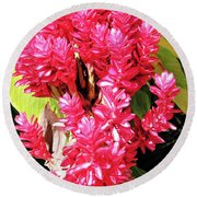 F10 Red Ginger Round Beach Towel