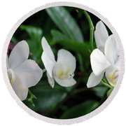 F11 Orchid Flowers Round Beach Towel